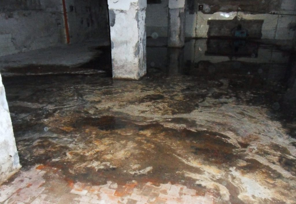 Professional Sewage Cleaning Services