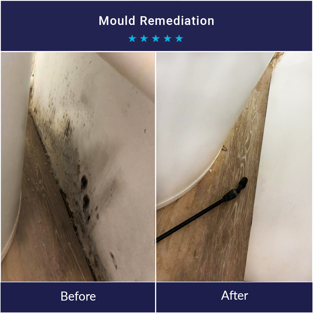 Before and after mould remediation