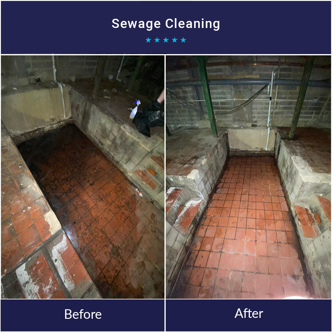 Sewage Cleaning Services