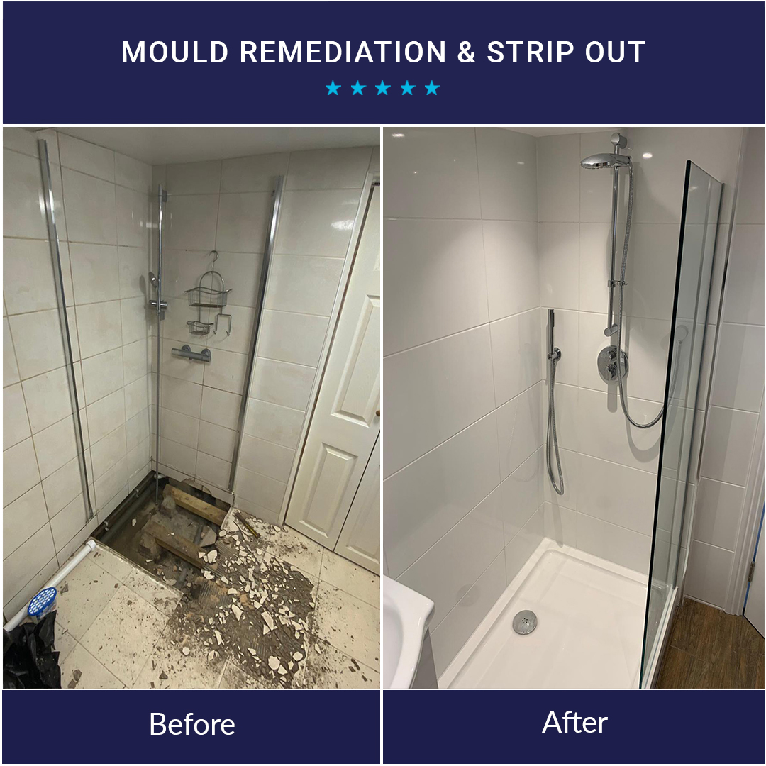 Mould Remediation and Strip Out